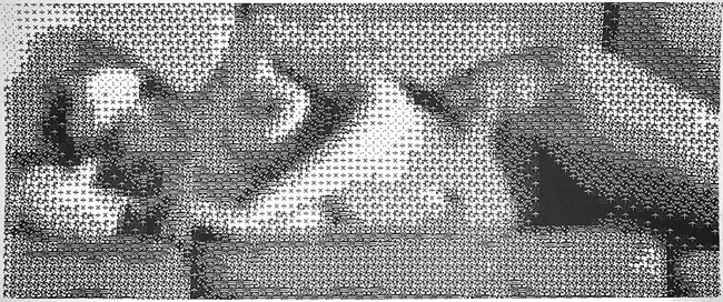 Leon Harmon and Kenneth Knowlton's reclining nude, 1966. An image of the dancer Deborah Hay was dissected into a grid and assigned an icon according to its halftone density.